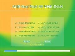 大白菜Ghost W10 32位 猴年专业机 2016.01