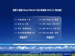 新萝卜家园Ghost Win10 (X32) 绿色纯净版V2016年12月(免激活)