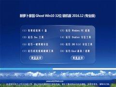 新萝卜家园Ghost Win10 (X32) 专业版 2016.12月(无需激活)